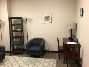 Office B North Austin Therapy 2